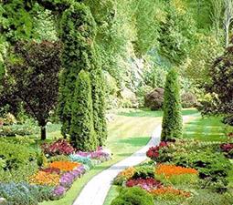Συντηρήσεις κήπων